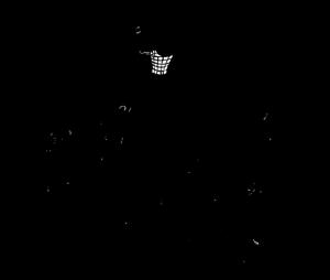 frans-netball-cartoon2